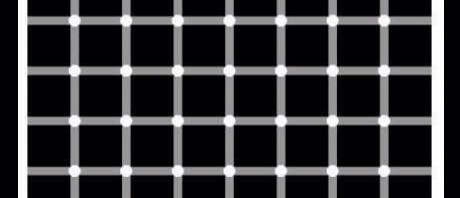 Count the Black Dots Optical illusion